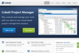 Cobalt Project Manager