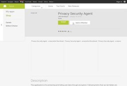 Privacy Security Agent