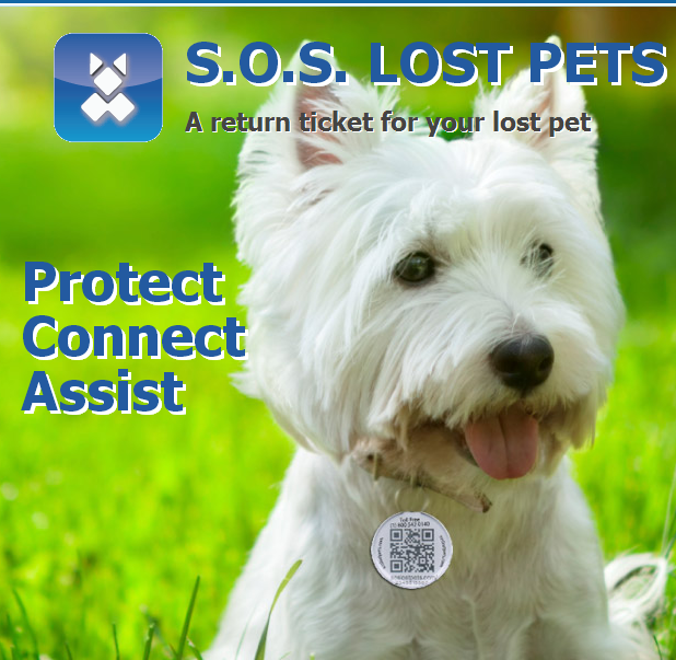 Where's Sophie? Use QRCodes to find lost pets for their owners