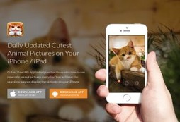 Cutest Paw Mobile App